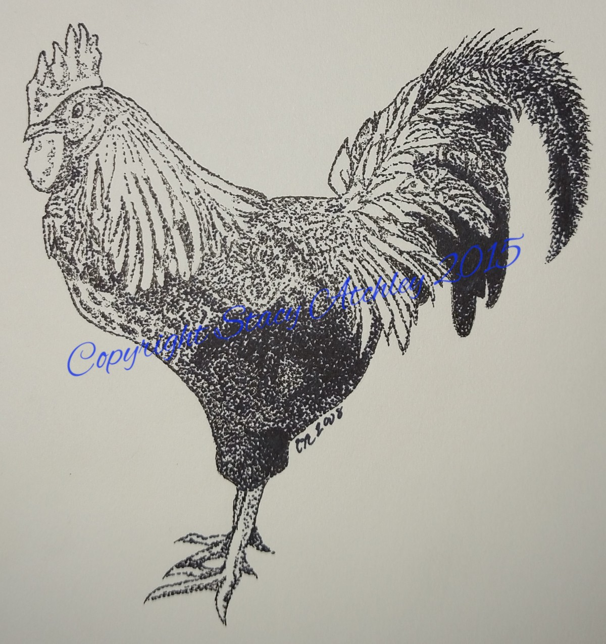 Rooster 2008W